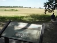 Pickett Charge's Start point.