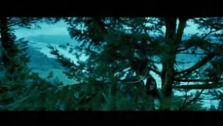 Tree scene from the movie