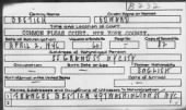 Naturalization Index - NYC Courts record example