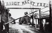 Nazi Concentration Camp Records