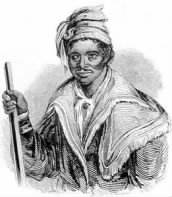 THE AFRICAN-NATIVE AMERICAN