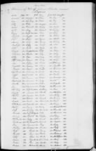 272 Slaves in the Estate of Solomon Clarke, Charleston, SC, 1851