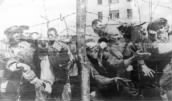 Maly Trostenets Extermination Camp