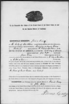 Naturalization Records of the U.S. Circuit Court for the Eastern District of Louisiana, New Orleans Division: Petitions, 1838-1861. P2233.