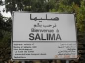 Farris, Solomon, Sadd, and allied families of Salima, Lebanon