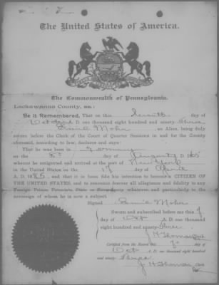 Example of a Naturalization Declaration