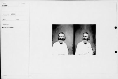 Walt Whitman photo by Mathew Brady