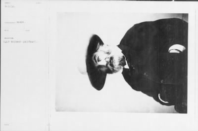 Walt Whitman photo from Matthew Brady Collection