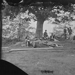 Wounded soldiers under trees after battle of Spotsylvania